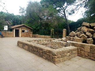 Appartement ruines romaines