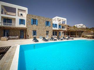 Paradise View Mykonos small Villa
