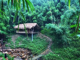 Lazycrazy Cabin in the Bamboo Forest