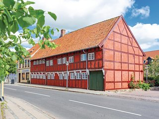 Beautiful apartment in Skælskør w/ WiFi and 1 Bedrooms (E20910)