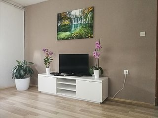 Two bedroom apartment Smoljanac, Plitvice (A-14979-b)