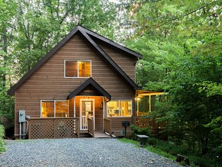 Dog-friendly Smoky Mountain cabin - fireplace, hot tub & game loft!