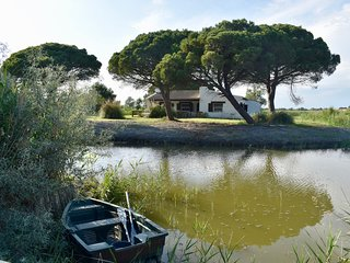 Lou Kif - Typical Camargue House