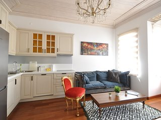 stylish apartment balat downtown