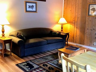 New! Bear Trap Cottage on Little Saint Germain lake!