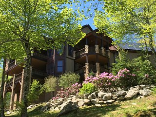 The Scarboro on Sugar Mtn w/Views, 7 BR's,Hot Tub, GameRm,