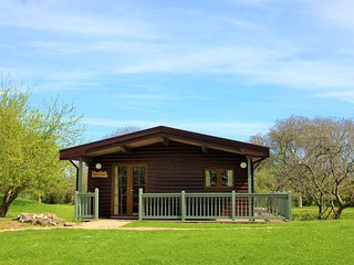 Spacious log cabin perfect for family/friend gatherings (Barn Owl)