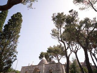 Trullo Bosco giardino selva Fasano by Typney