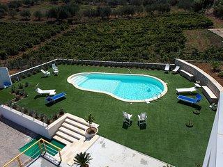 Spacious villa with pool access