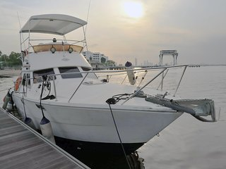 Boat Charter Services