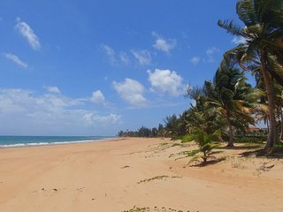 Oceanview PH close Rainforest and Beaches