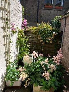 Small courtyard at rear door