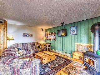 Ski-in/ski-out studio w/ wood stove, shared hot tub & home conveniences!