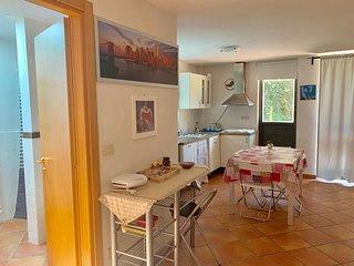 Appartamento indipendente con ampio giardino, monolocale, con cucina  bagno 65mq