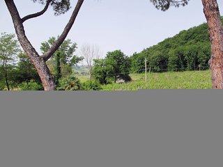 Casa Piturina (MSO190)