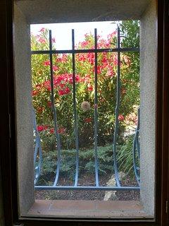 fenêtre de la chambre