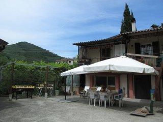 Il Borgo delle Mimose (FLG350)