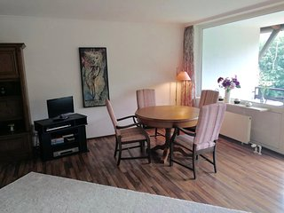 Roof-top spacious Maisonette apartment 5 minutes from Lake Chiemsee