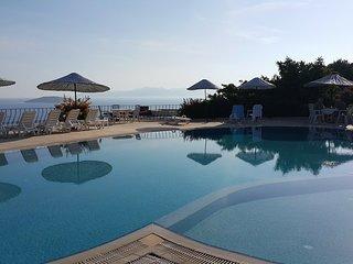 A Flat in a Villa - Appartement spacieux avec vue imprenable sur la mer !