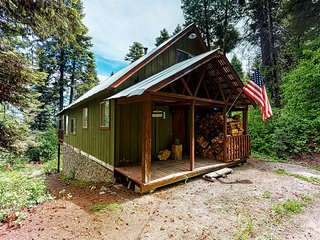 Atmospheric cabin with forest/lake views, firepit & wood-burning stove!