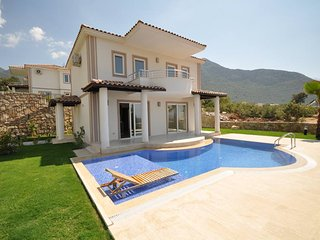 Hanel Royal Villa with Private Pool and Garden