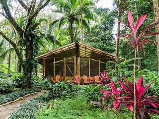 Casita Tranquila in Tropical Forest on secluded calm Beach.