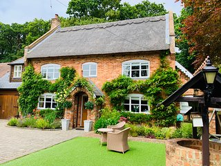 Luxury New Forest cottage rental.  Sleeps 8-10. Book early !