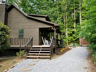 Rustic Georgia Mountain Cabin! Book now for the Spring and Summer season!