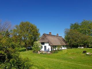 Landhaus Reetdachkate in der Wiese, 6 km zu Ostsee in einem kleinen Bauerndorf