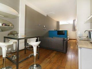 Joli appartement aux Beaux Arts (Loft avec Terrasse)