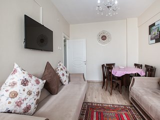 Spacious family flat next 2d Blue Mosq!