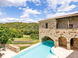 Banne Chateau Sleeps 20 with Pool - 5049488
