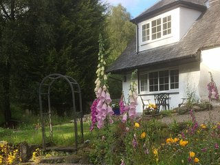 Modern woodland cottage near lochs, hills and cycle routes