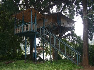Cool & Tranquil place/Tree House Stay