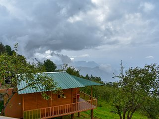Awesome & Traditional Tree House Stay/Kodaikanal