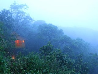 Tree House Nature Lover's Paradise Stay