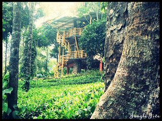 Nature Plantation View/Couples Stay/Tree house