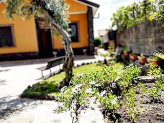 Etna Family Casa vacanza
