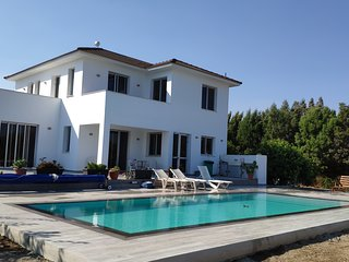 Kiti Village Villa with Salt-water pool - Larnaka