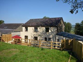 75907 Barn situated in Brynteg