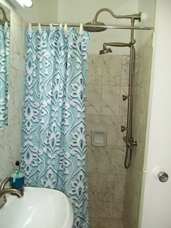 Stand up shower with upgraded fixtures in bathroom (no tub in bathroom).