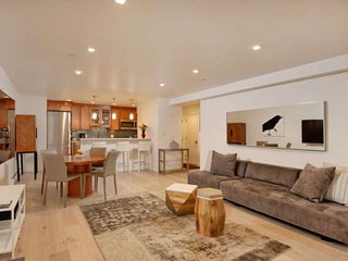 New Rental! Cool,Quiet Getaway-Walk to Downtown Aspen, Free Shuttle, Gas Firepla
