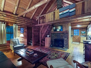 NEW LISTING! Dog-friendly cabin w/ fireplace - close to skiing/shopping/dining