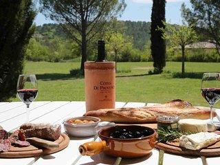 Entspannung total - Familien-Ferienhaus, Seillans/Provence /Südfrankreich