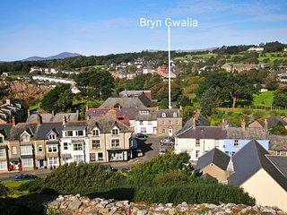 Bryn Gwalia