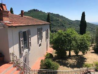 Villa Maona - tra Firenze e Pisa