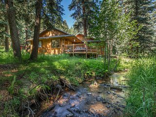 Creekside Cabin in the Mountains 30 miles from Downtown Denver