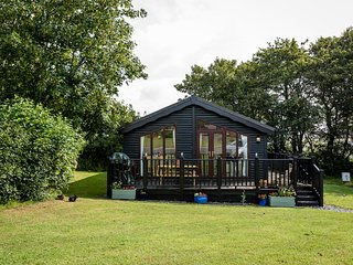 Lodge 233 - Family Lodge with use of indoor pool, play ground, tennis & more