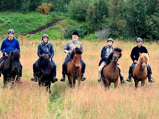 A farm with icelandic horses and access to salmon fishing with accommodation.