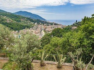 Villa Pia - apart. B - with pool Recco Camogli Cinque Terre